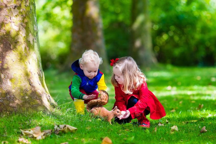 Ontdekkend leren met jonge kinderen. Wat is het en hoe pak je het aan? -Mamaliefde.nl