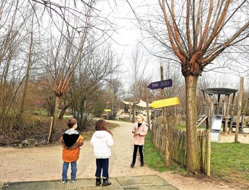 Hof van Eckberge; buiten & binnenspeeltuin met mini zoo!
