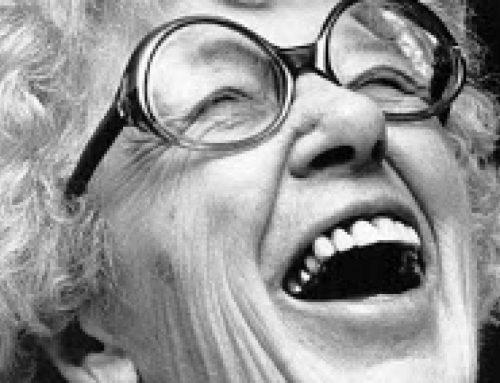 Annie M.G. Schmidt Dag