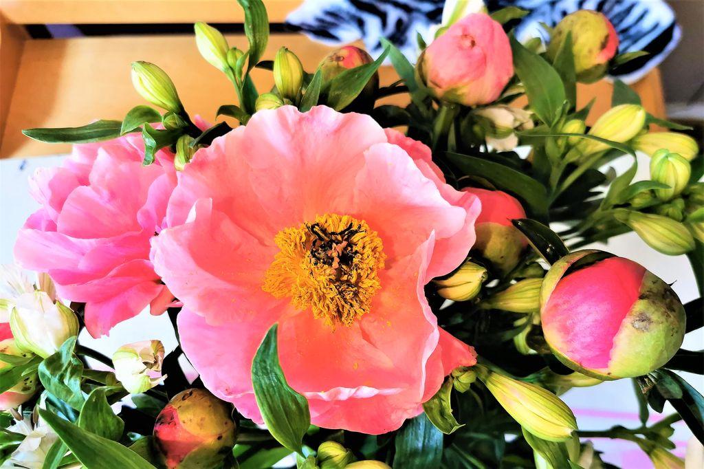 De digitale pluktuin; om verspilling van bloemen tegen te gaan - Mamaliefde.nl