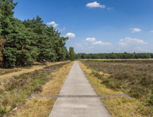 De leukste kindercampings in Drenthe