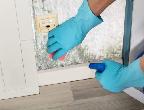 Tips tegen schimmel en stank in natte ruimtes en keuken