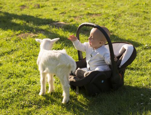 Maxi-Cosi effect; wat is het en hoe lang mag je kind om de gevolgen te voorkomen?