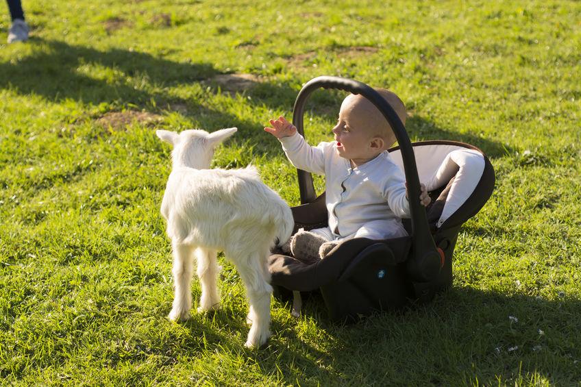 Maxi-Cosi effect; Wat is het en hoe lang mag je kind om de gevolgen te voorkomen? - Mamaliefde.nl