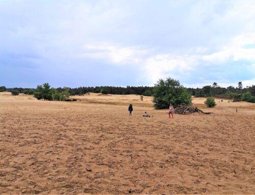 Kootwijkerzandvlakte; van picknicken in het zand, uitkijktoren beklimmen tot wandeling