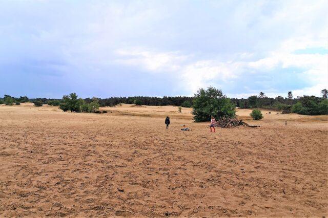 Kootwijkerzandvlakte; Van picknicken in het zand, uitkijktoren beklimmen en wandeling - Mamaliefde.nl