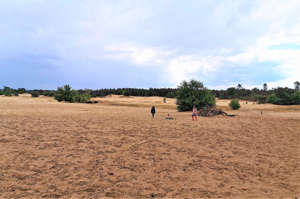 Kootwijkerzandvlakte met kinderen; Van picknicken in het zand, uitkijktoren beklimmen en wandeling - Mamaliefde.nl