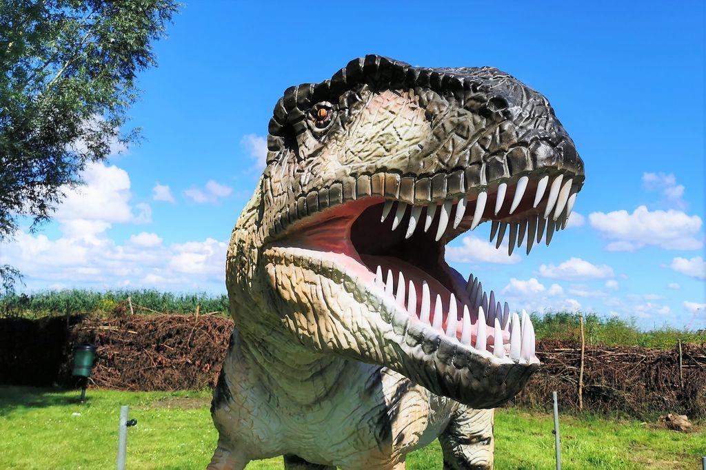 Dino Experience Park Gouda - Mamaliefde.nl