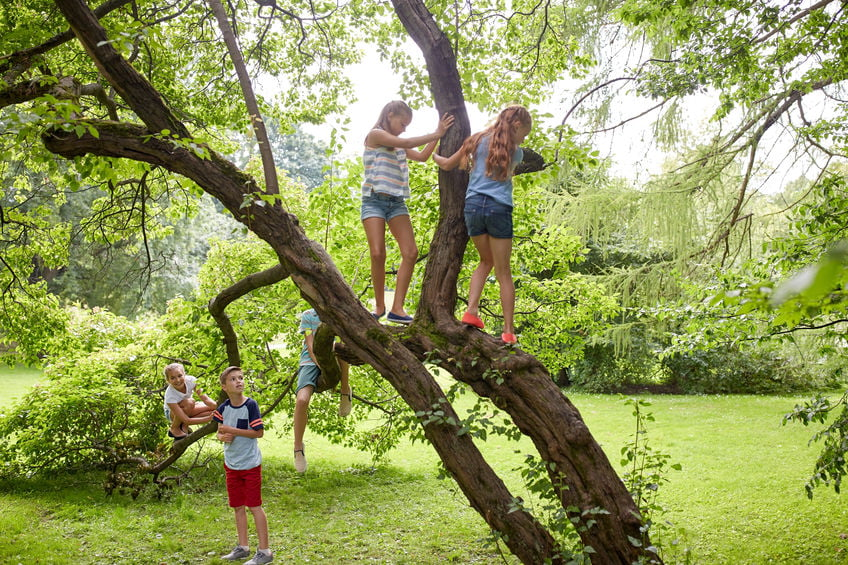 Natuurspeeltuin, speelbos of speelplaats in bos met kinderen - mamaliefde.nl