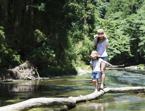 92 Kinderwandelroutes om te wandelen met kind, peuter of kleuter in Nederland