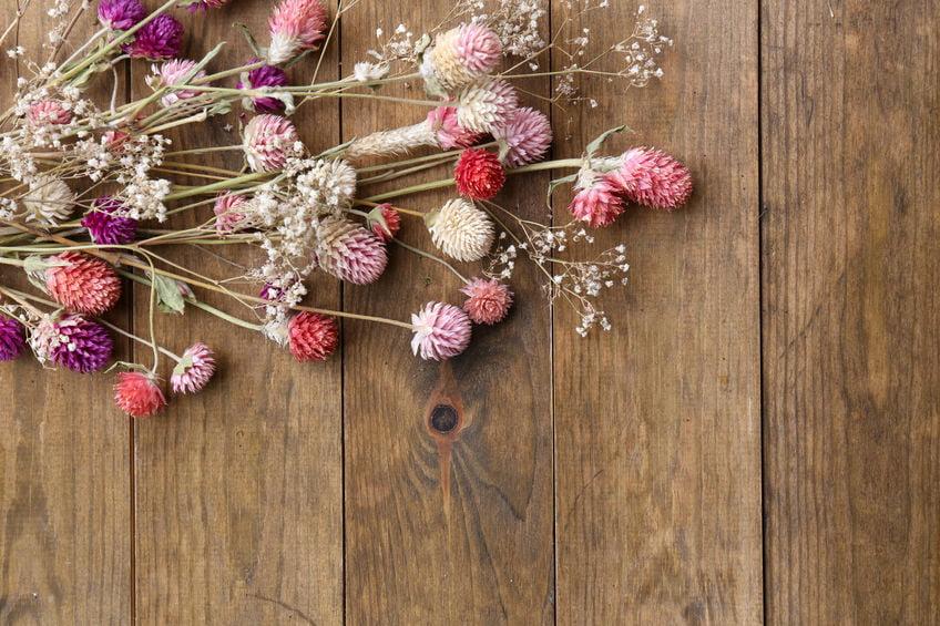 Droogbloemen; de interieur trend van 2020. Met tips van verzorgen tot houdbaarheid of zelf droogbloemen maken. - Mamaliefde.nl