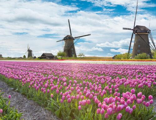 De leukste molens in Nederland om te bezoeken met kinderen