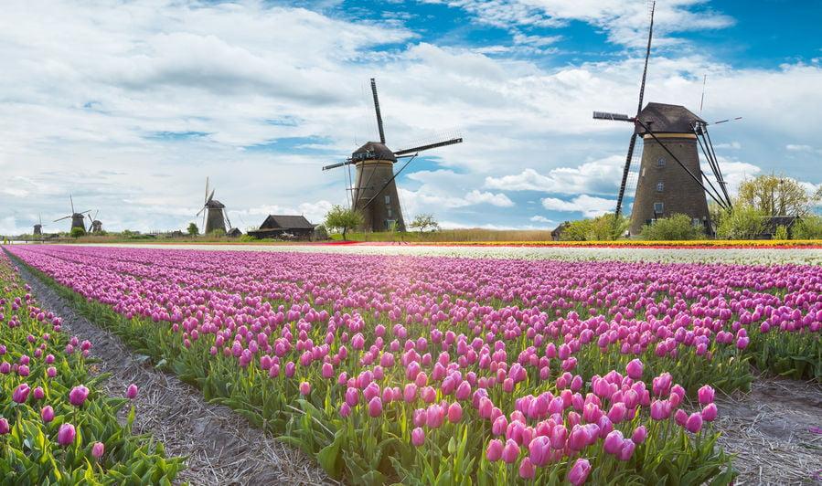 Leukste molens van Nederland - Mamaliefde.nl