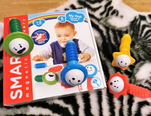 Review: SmartMax My First Sounds & Senses