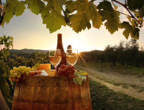 De beste wijnen van de Hema