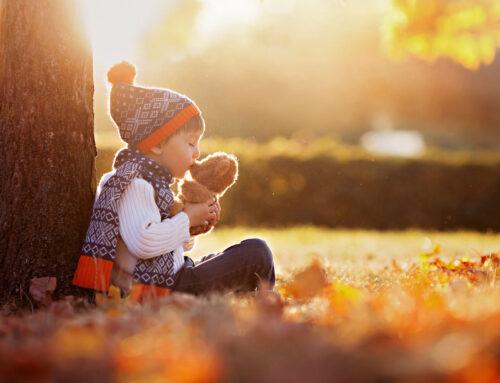 Activiteiten en tips voor herfst en winter (tijdens de tweede golf)