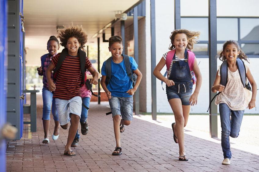 Tropenrooster op de basisschool - Mamaliefde.nl