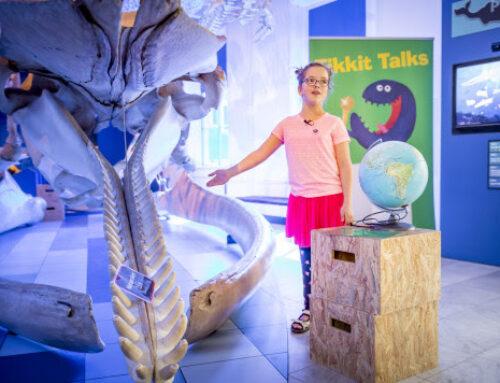 Kom tijdreizen door het museum tijdens de Museumkidsweek 2020!
