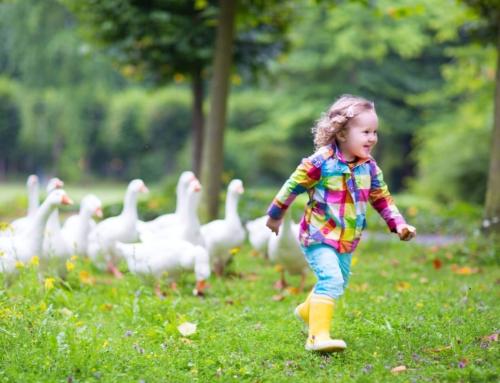 Coronaproof buiten spelletjes en activiteiten met de kinderen