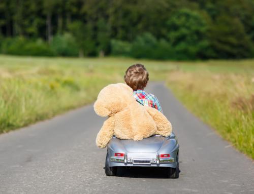 Logeerbeer Flip op kinderdagverblijf of in de kleuterklas